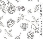 hand drawn raspberry. retro... | Shutterstock .eps vector #1069137761