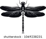 vector image of a black... | Shutterstock .eps vector #1069238231