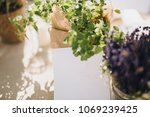 on festive table in wedding... | Shutterstock . vector #1069239425