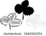 hand drawn strawberry leaf  in... | Shutterstock .eps vector #1069242251
