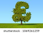 Money Tree In The Shape Of A...