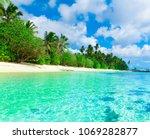 paradise foliage plants  | Shutterstock . vector #1069282877