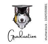 husky dog graduate. graduation... | Shutterstock .eps vector #1069350881
