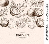 vector frame with coconuts and... | Shutterstock .eps vector #1069386161