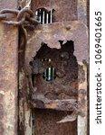 Small photo of Old lock of a wrought iron gate corroded by the weather of a marine climate