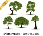collection beautiful tree... | Shutterstock .eps vector #1069469501