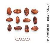 raw cacao bean and chocolate... | Shutterstock . vector #1069472174