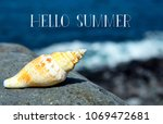 hello summer greeting card with ... | Shutterstock . vector #1069472681