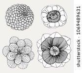 set hand drawn beautiful flower ...   Shutterstock . vector #1069489631