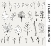 set of hand drawn tropical...   Shutterstock . vector #1069489655