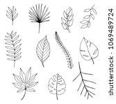 set of hand drawn tropical... | Shutterstock . vector #1069489724