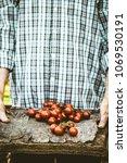organic vegetables. farmers... | Shutterstock . vector #1069530191