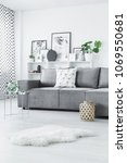 white fur near grey couch in... | Shutterstock . vector #1069550681