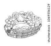 hand drawn basket with fruits.... | Shutterstock .eps vector #1069556129