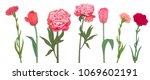 set of red  pink spring garden... | Shutterstock .eps vector #1069602191