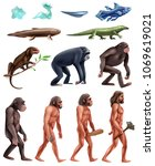 colored and isolated darwin...   Shutterstock .eps vector #1069619021