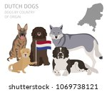 dogs by country of origin.... | Shutterstock .eps vector #1069738121