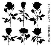 Stock vector roses silhouettes set of vector silhouettes on white background 1069751345