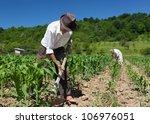 Family Of Rural Workers Weeding ...
