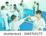 diligent serious teenagers... | Shutterstock . vector #1069765175
