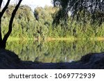reflection of green trees in... | Shutterstock . vector #1069772939
