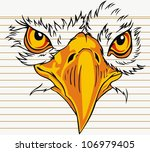 Eagle Face With On Paper