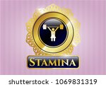 gold emblem with weightlifter... | Shutterstock .eps vector #1069831319