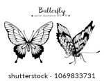 hand drawings butterfly. black... | Shutterstock .eps vector #1069833731