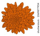 beautiful color sketch  dahlia... | Shutterstock .eps vector #1069877954