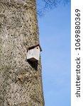 bird house mounted on a tree... | Shutterstock . vector #1069880369
