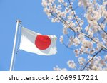 Japan flag and cherry blossoms