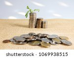 Small photo of Picture of Money Saving To accumulate from as little
