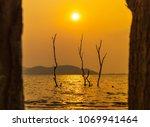 scenic of dead tree in water...   Shutterstock . vector #1069941464