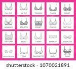 set of types of female bras ... | Shutterstock .eps vector #1070021891