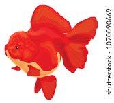 goldfish on a white background | Shutterstock .eps vector #1070090669