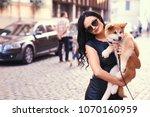 stylish brunette woman in a... | Shutterstock . vector #1070160959