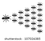 toy ants on white background | Shutterstock . vector #107026385