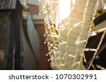 fairy lights decorate new year... | Shutterstock . vector #1070302991
