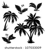 palm trees  flowers and grass ... | Shutterstock . vector #107033009
