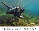 Scuba Diver In The Cenote Lake. ...