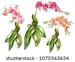 beautiful watercolor set with... | Shutterstock . vector #1070363654