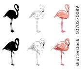 hand drawing flamingos. vector... | Shutterstock .eps vector #1070370089