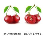 realistic vector ripe red...   Shutterstock .eps vector #1070417951