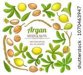 argan elements  vector set | Shutterstock .eps vector #1070463947