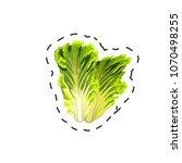 fresh appetizing vegetable for...   Shutterstock .eps vector #1070498255