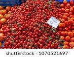 fresh ripe tomatoes on the farm ... | Shutterstock . vector #1070521697