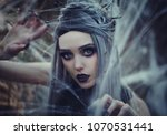 beautiful sexy gothic girl with ... | Shutterstock . vector #1070531441