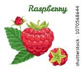 vector raspberry with green... | Shutterstock .eps vector #1070568644