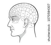 phrenology retro pseudoscience... | Shutterstock .eps vector #1070584307
