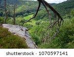 nice wiev at podyji  thayatal  | Shutterstock . vector #1070597141